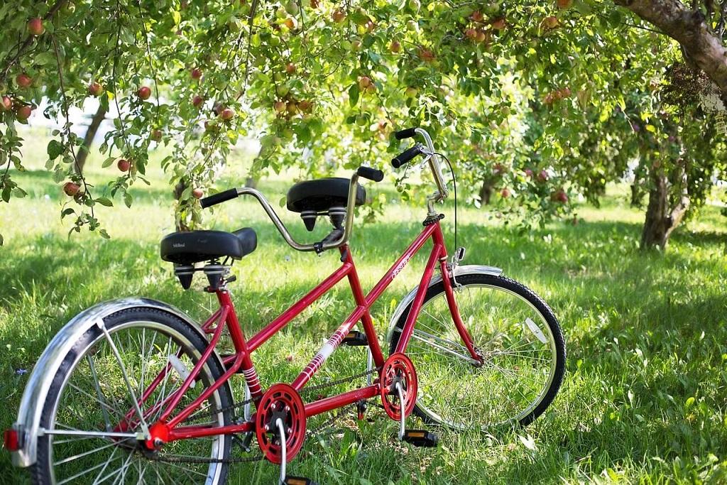 diy-tandem-bike